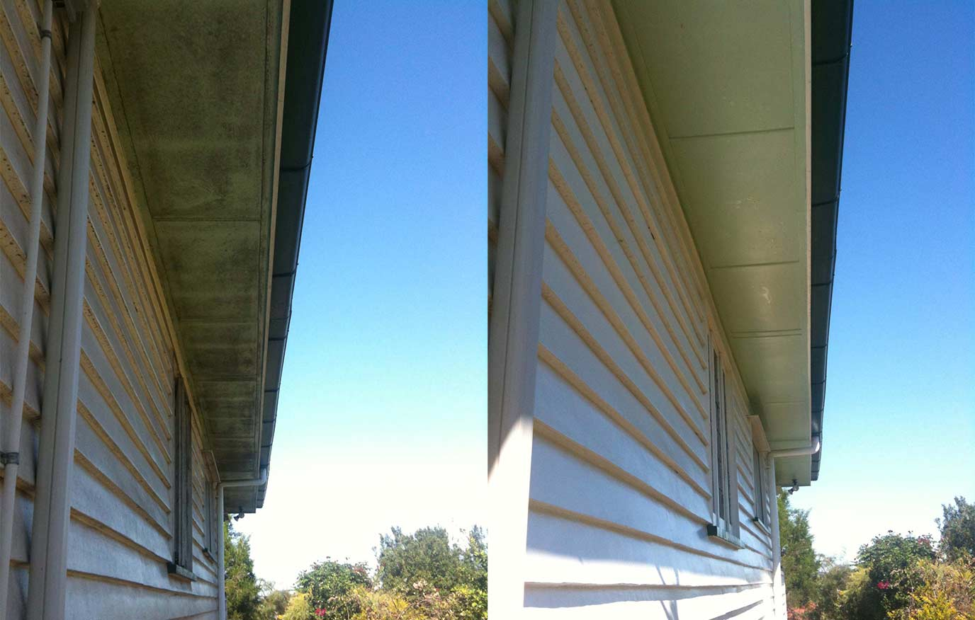 Before and After House Washing