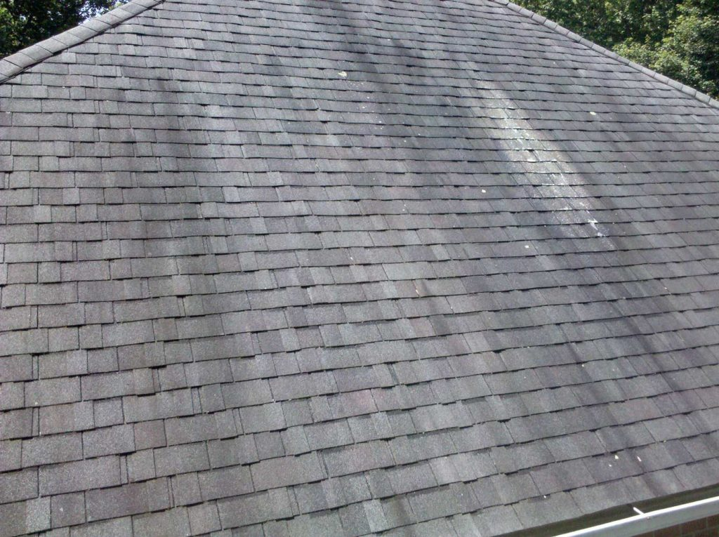 Gloeocapsa Magma on Shingles | Roof Cleaning Brisbane