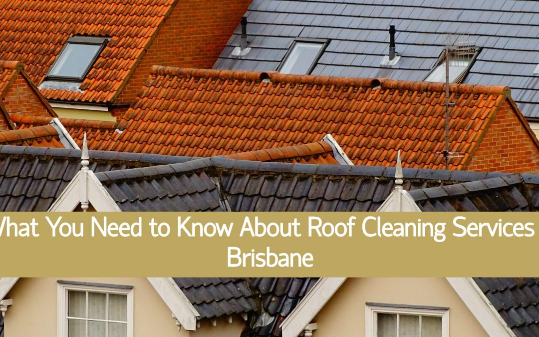 What You Need to Know About Roof Cleaning Services in Brisbane