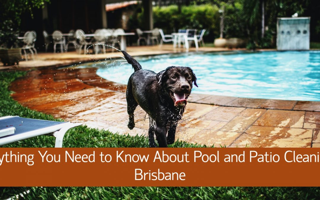 Everything You Need to Know About Pool and Patio Cleaning in Brisbane